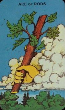 Tarotkaart 'Aas van Staven'