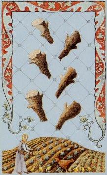 Tarotkaart 'Zes van Staven'